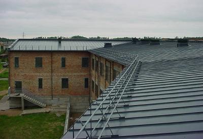 Plieninis klasikinis (valcuojamas) stogas. Kauno rajono mokykla