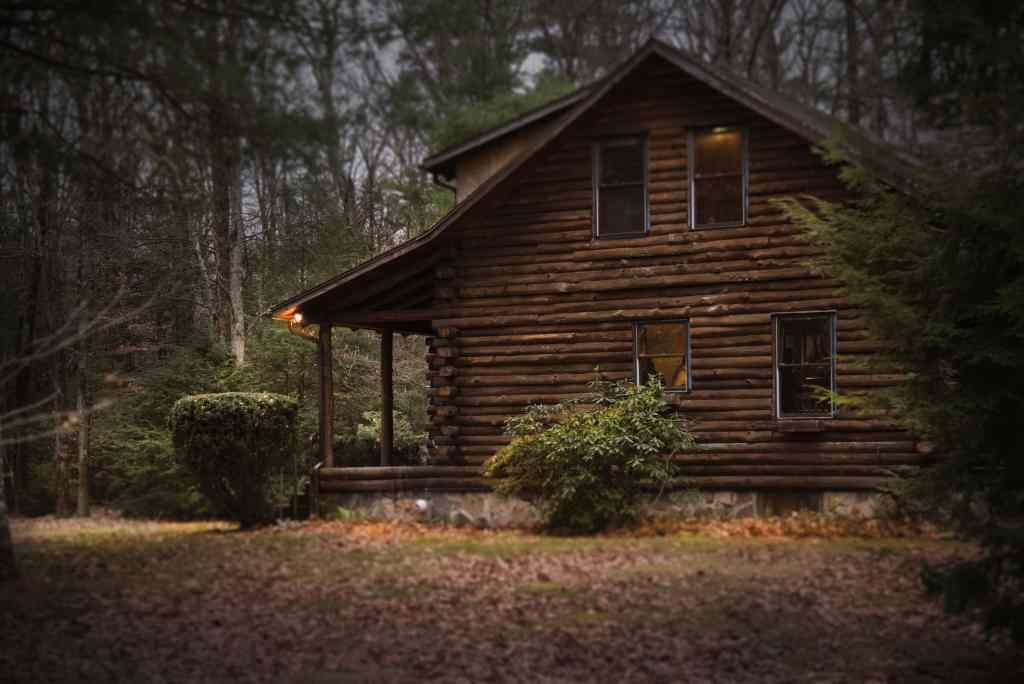 rastinis namas